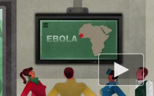 В Японии госпитализировали женщину с подозрением на вирус Эбола