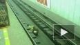"""Незрячий пассажир рухнул на рельсы на """"Чкаловской"""""""