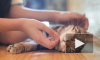 У кошек в Ухане обнаружили коронавирус