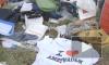 Совет ЕС призвал Россию признать ответственность за трагедию с MH17