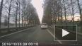 Кадры ужасного ДТП с участием пешехода на Детскосельском ...