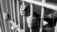 В Мурманской области возбуждено уголовное дело по ...