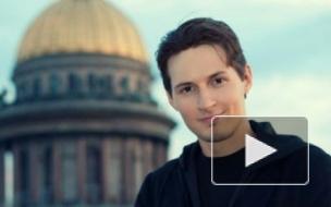 Павла Дурова подводят под суд за красивую жизнь на 273 млн