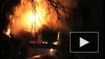 В Петербурге вместо елки зажгли полицейский автозак