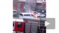 В Ладожском парке загорелся автомобиль