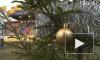 Петербург отмечает Рождество в Петропавловской крепости