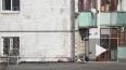 Видео: ленивый, но хитроумный хозяин порыбачил на кота