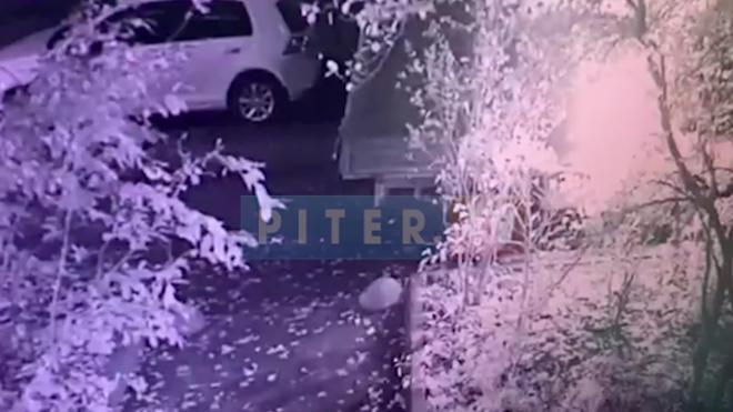 """Поджог """"Газели"""" на Пискаревском проспекте попал на видео"""