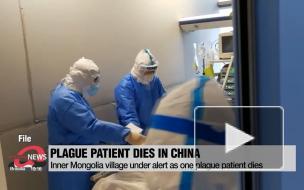 В Монголии зафиксировали новую смерть от бубонной чумы