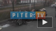 Появилось видео с места смертельного ДТП в Колпино