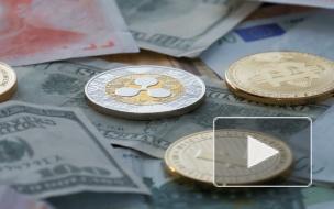 Стивена Сигала оштрафовали на 314 000 долларов в США за рекламу криптовалюты