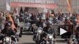 В Петербурге прошел Harley Days 2015