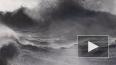 """В сети опубликованы видеокадры 3-метровой волны """"убийцы"""" ..."""