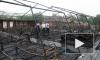 Под Хабаровском сгорел детский палаточный лагерь, один ребенок погиб