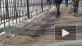 Появилось видео эвакуации учеников 247 школы Санкт-Петер...