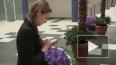Мобильный интернет развивает регионы