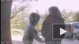 Двое неизвестных обокрали школьника на проспекте Художни...