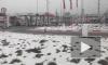 Происшествия в Петербурге за сутки: обзор 20 декабря