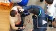 Видео: «месилово» краснодарцев с дагестанцами во время б...