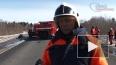 Полицейский, задержанный за ДТП с петербургскими сиротам...