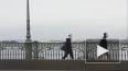 Спасатели приехали выручать лебедя к Троицкому мосту, ...