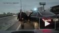 Скандал с мигалкой: VIP-водитель подрезал и обматерил ...