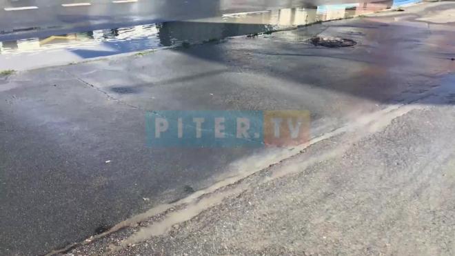 """У """"Комендантского"""" произошел прорыв трубопровода: вода хлещет по всей улице"""