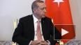 "Эрдоган хочет оплатить вину за сбитый Су-24 ""Турецким ..."