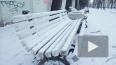 Дыхание Петербурга: топ новостей последней недели осени