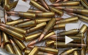 У петербуржца изъяли шесть тысяч патронов и две гранаты