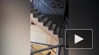В колледже в Красном Селе обвалился потолок после подачи отопления