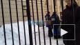 Очередная эвакуация: На Невском проспекте выводят ...