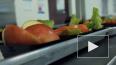 В Госдуму внесли законопроект о горячем питании для ...