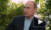 Путин высказался о встрече Зеленского с националистами на Украине