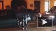 Участники ПМЭФ ночью создали пробку на Гороховой улице