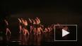 В Петербурге пройдет День современного танца Израиля