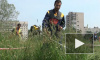 В Петербурге отметили День газонокосильщика