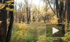 Золотая осень в Сибире фильм Михаила Киселёва муз. Рафаэль Байдалин