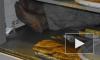 В Петрозаводске вор застрял в ларьке с выпечкой при попытке скрыться с места преступления