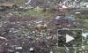 В Новосергиевке нашли свалку с трупом барана и подтопленную навозом