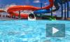 Бойня в аквапарке в Японии: маньяк зарезал весьмерых девушек под водой