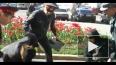 Полиция задержала оппозиционеров за мелки