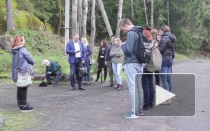 Немцы посетили производство вешенок под Выборгом