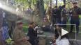 Видео: в Таврическом саду петербуржцы закружились ...