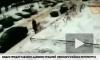Появилось видео падения снежной глыбы на петербурженку с коляской
