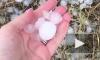 Град размером с перепелиное яйцо уничтожил фруктовые деревья в Крыму