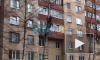 Видео: На Ленинском спасатели высвободили чайку из плена дерева
