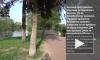 В парке Победы цыганка при помощи магии обокрала доверчивую петербурженку