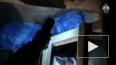 Жуткое видео из Магадана: Мужчина отсидел в тюрьме ...