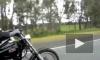 Австралийские власти приравняют байкеров к педофилам